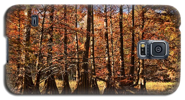 Galaxy S5 Case featuring the photograph Autumn Splendor At Lake Murray by Tamyra Ayles