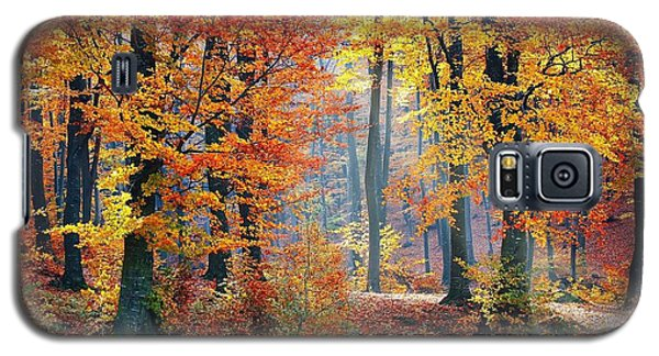 Autumn Splendour Galaxy S5 Case