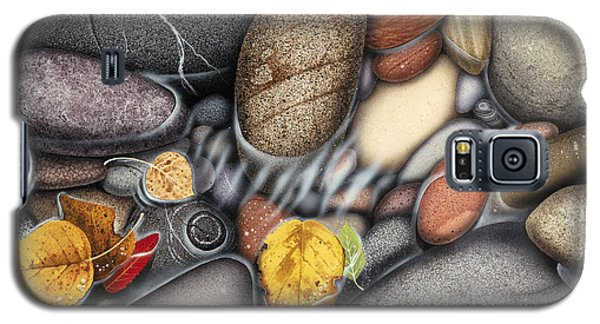 Autumn Stones Galaxy S5 Case by JQ Licensing