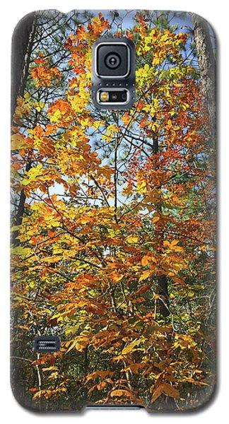 Autumn Sunday Galaxy S5 Case