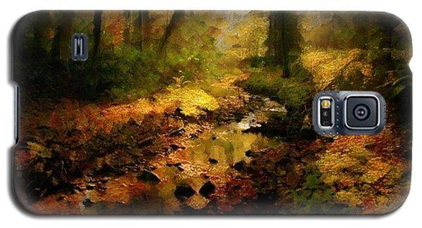 Autumn Sunrays Galaxy S5 Case