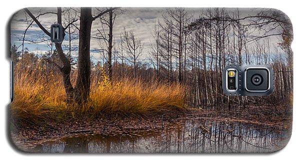 Autumn Swamp Galaxy S5 Case