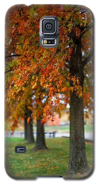Autumn Trees In A Row Galaxy S5 Case