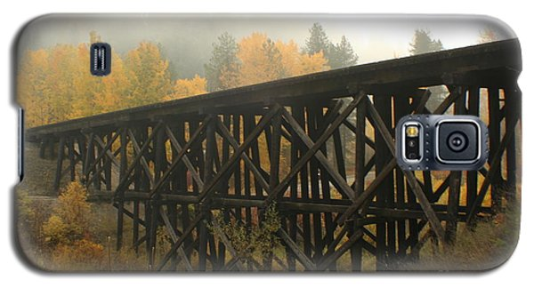 Autumn Trestle Galaxy S5 Case