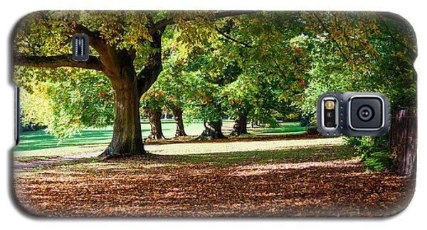Autumn Walk In The Park Galaxy S5 Case