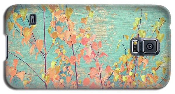 Galaxy S5 Case featuring the photograph Autumn Wall by Ari Salmela