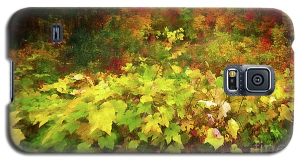 Autumn Watercolor Galaxy S5 Case