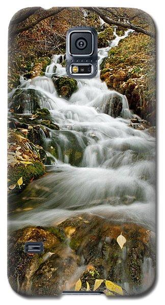 Autumn Waterfall Galaxy S5 Case
