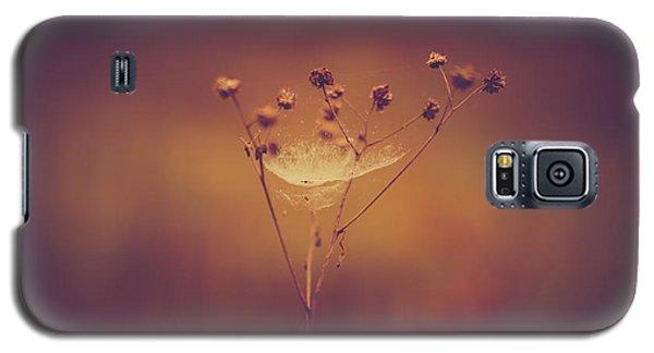 Autumn Web Galaxy S5 Case