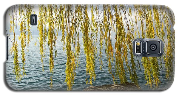 Galaxy S5 Case featuring the photograph Autumn Willow by Colleen Williams