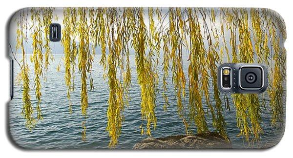 Autumn Willow Galaxy S5 Case