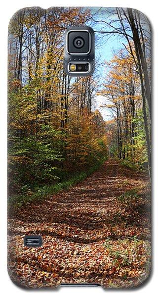 Autumn Woods Road Galaxy S5 Case