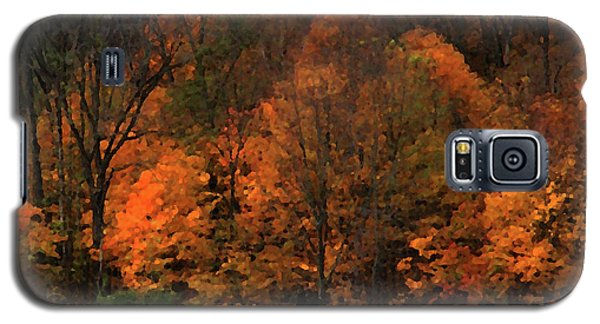 Autumn Woods Galaxy S5 Case