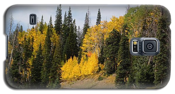Galaxy S5 Case featuring the photograph Autumnal Forest-dixie National Forest Utah by Deborah Moen
