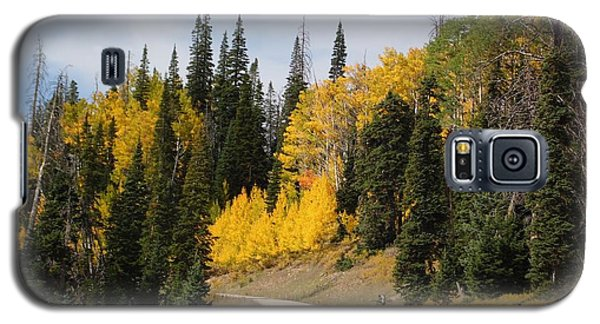 Autumnal Forest-dixie National Forest Utah Galaxy S5 Case