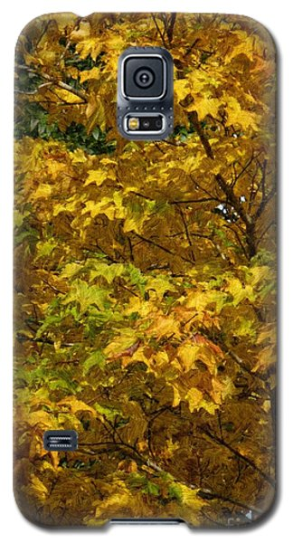 Autumnal Leaves And Trees 2 Galaxy S5 Case