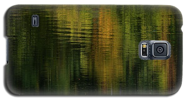 Autumnal Reflections Galaxy S5 Case