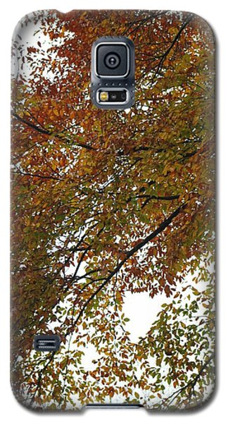 Galaxy S5 Case featuring the photograph Autumn's Abstract by Deborah  Crew-Johnson