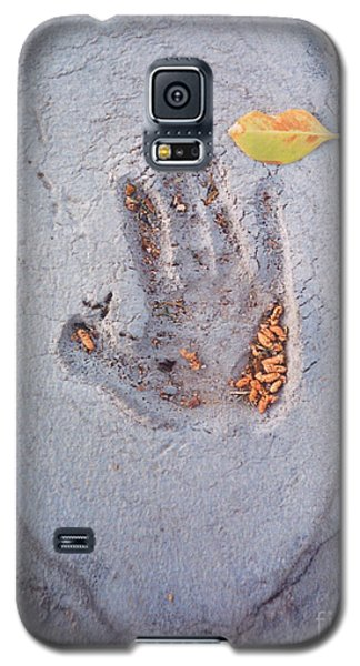 Autumns Child Or Hand In Concrete Galaxy S5 Case by Heather Kirk