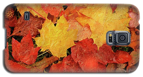 Autumns Gifts Galaxy S5 Case