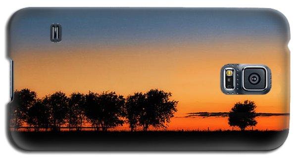 Autumn's Golden Glow Galaxy S5 Case