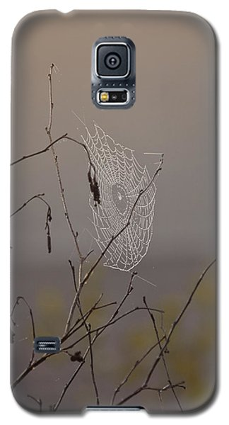 Autumns Web Galaxy S5 Case by Susan Capuano