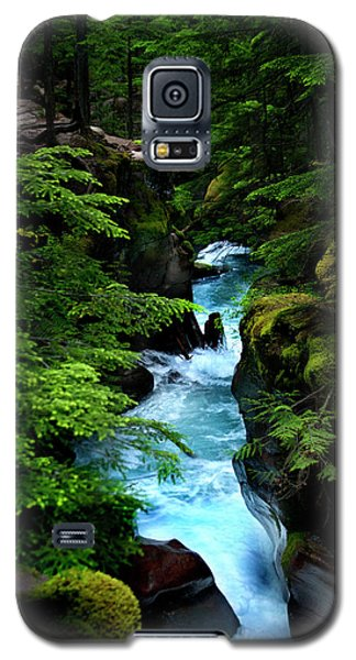 Avalanche Creek Waterfalls Galaxy S5 Case