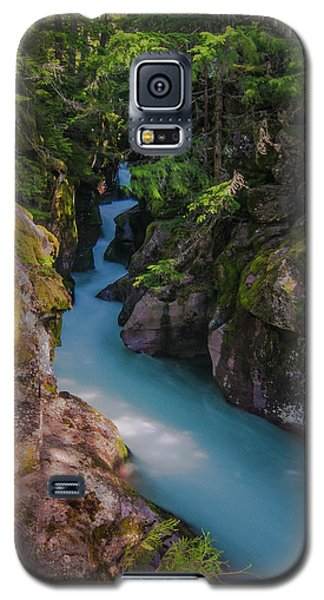 Galaxy S5 Case featuring the photograph Avalanche Gorge 5 by Gary Lengyel
