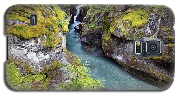 Avalanche Gorge In Glacier National Park Galaxy S5 Case