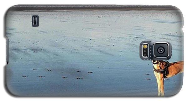 Galaxy S5 Case - Ava's Last Walk On Brancaster Beach by John Edwards