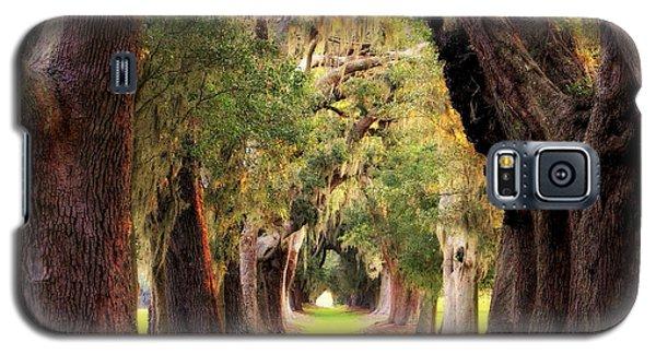 Avenue Of Oaks Sea Island Golf Club St Simons Island Georgia Art Galaxy S5 Case by Reid Callaway