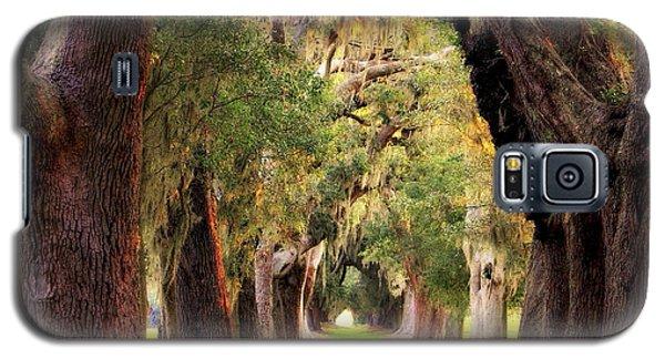 Avenue Of Oaks Sea Island Golf Club St Simons Island Georgia Art Galaxy S5 Case