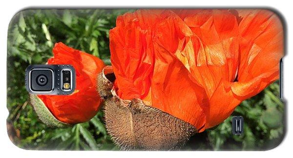 Galaxy S5 Case - Awakening Poppy by Orphelia Aristal
