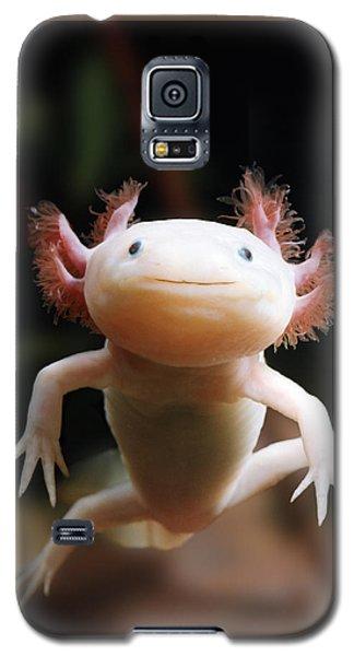 Axolotl Face Galaxy S5 Case
