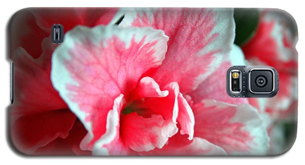 Azalea Close-up Galaxy S5 Case