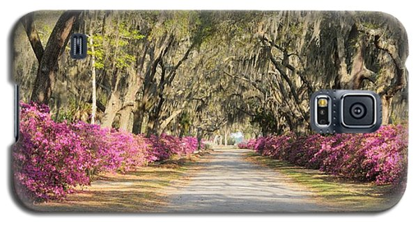 azalea lined road in Spring Galaxy S5 Case