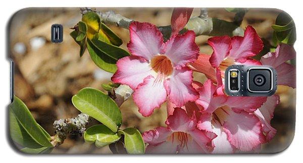 Azalea Pink I Galaxy S5 Case