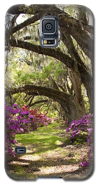 Azaleas And Live Oaks At Magnolia Plantation Gardens Galaxy S5 Case