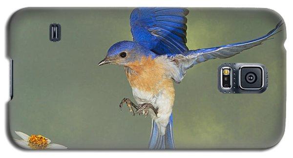 B For Blue Galaxy S5 Case