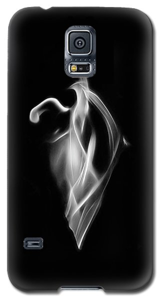 B/w Flame 7092 Galaxy S5 Case