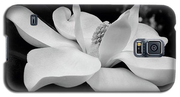 B W Magnolia Blossom Galaxy S5 Case