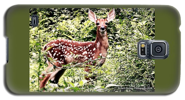 Babe In The Woods Galaxy S5 Case