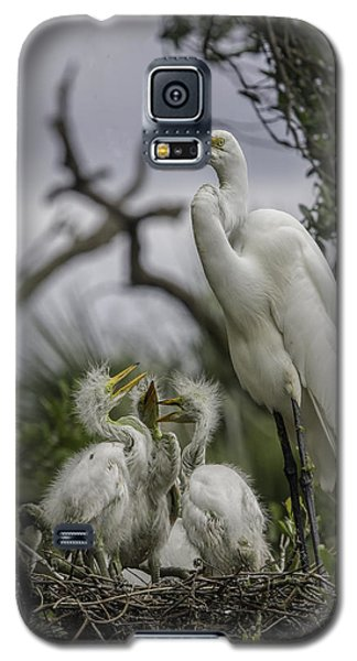 Babies In The Nest Galaxy S5 Case