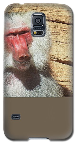 Galaxy S5 Case featuring the photograph Just Walk Away by Cathy Harper