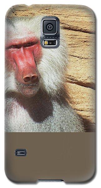 Just Walk Away Galaxy S5 Case by Cathy Harper