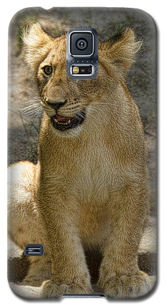 Galaxy S5 Case featuring the photograph Baby Baby by Cheri McEachin