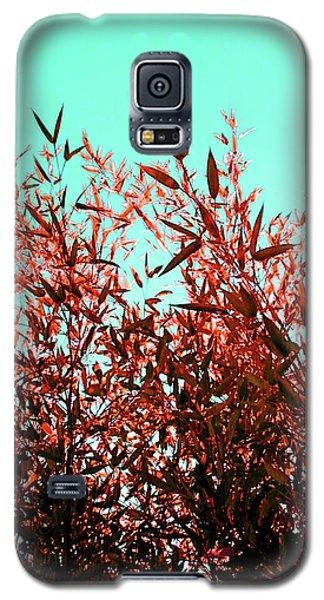 Baby Bamboo - Ochre  Galaxy S5 Case by Rebecca Harman