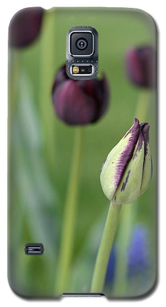Galaxy S5 Case featuring the photograph Baby Bloomer by Linda Mishler