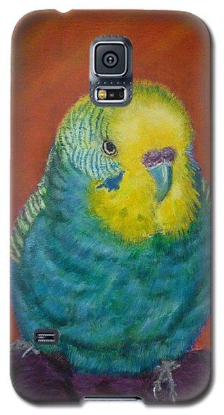 Baby Blue Galaxy S5 Case