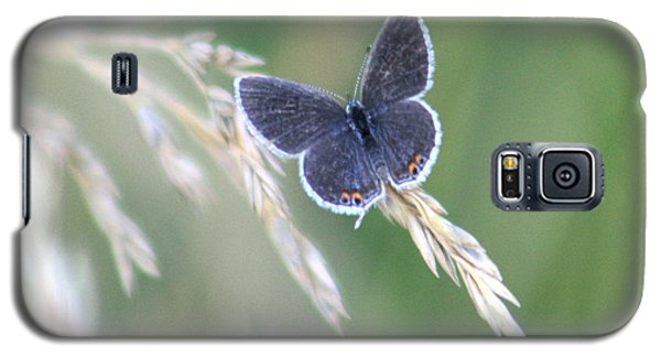 Galaxy S5 Case featuring the photograph Baby Blue by David Dunham